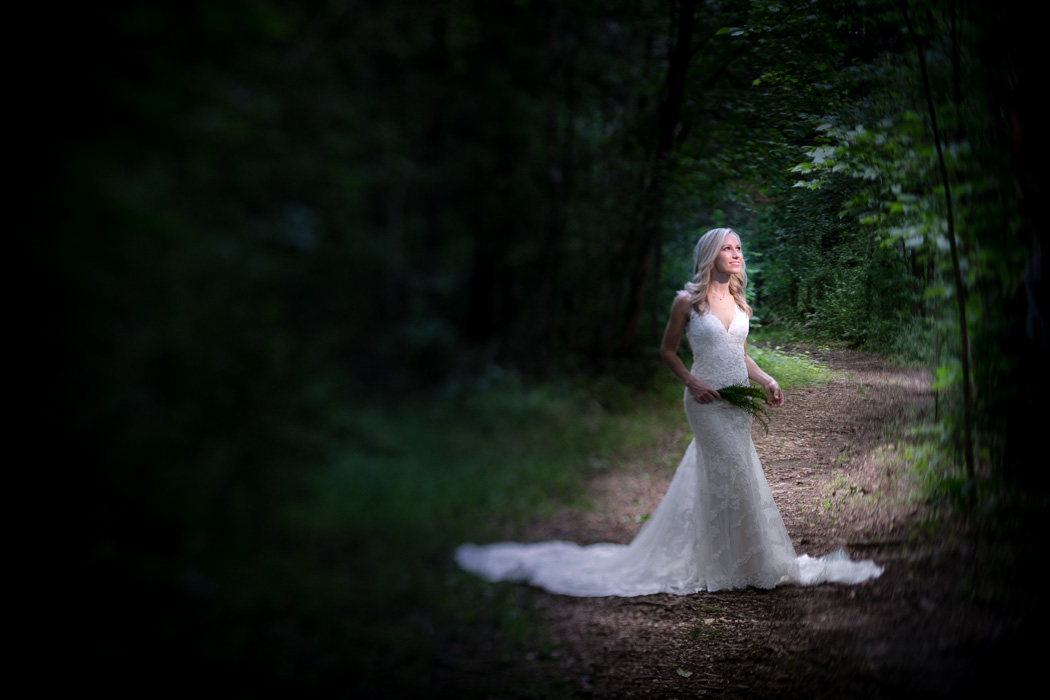 Newscaster LizCrawford stands in sunlit forest during romance session wedding portrait at Stone Hagan Park in Greensboro, NC.